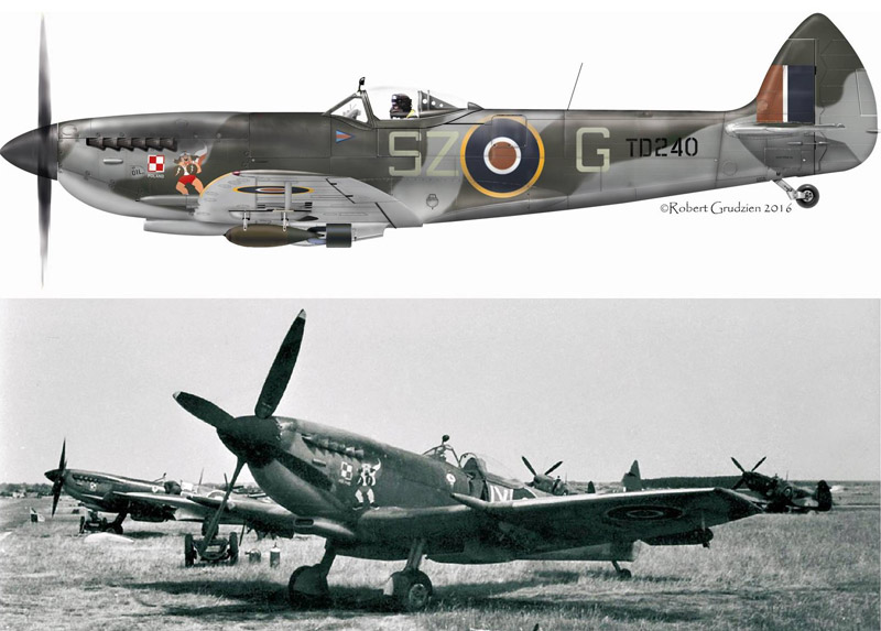 In 2018 BBMF Spitfire Mk XVI TE311 will appear as Gp Capt Aleksander Gabszewicz's TD240, 'SZ-G' with its boxing dog nose art