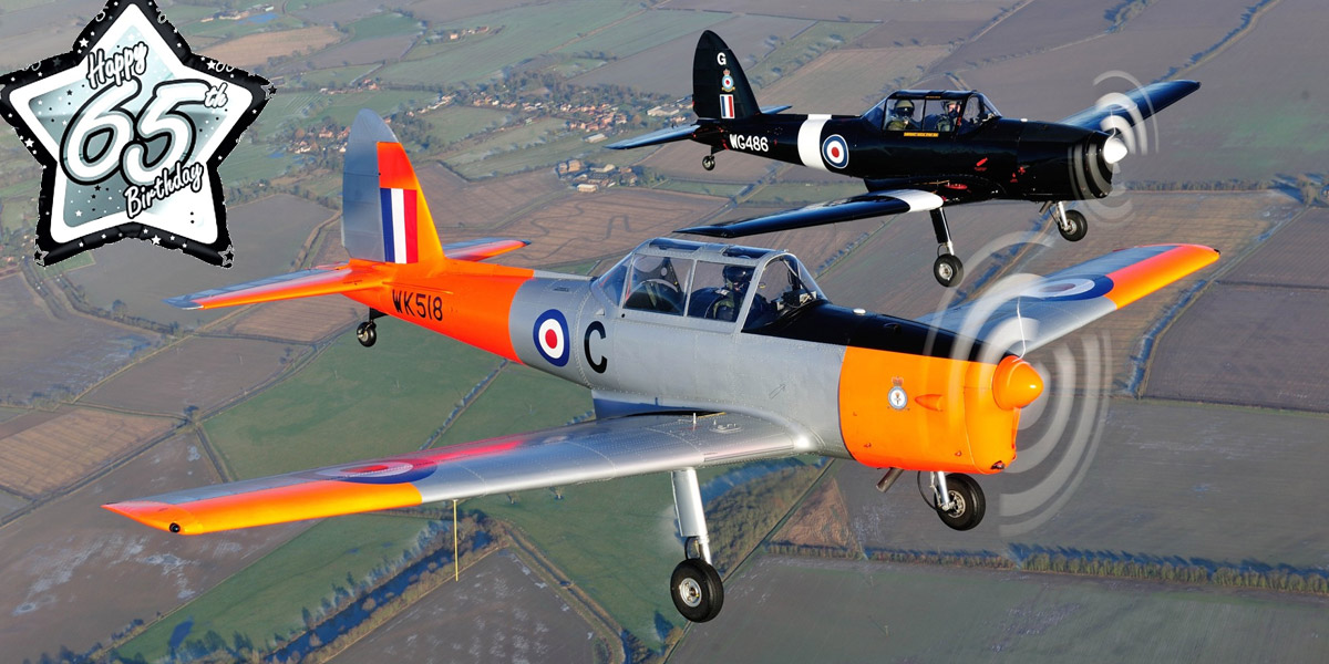 BBMF Chipmunks