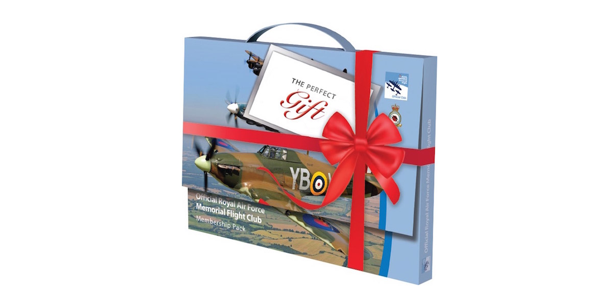 Mother's Day gift for aviation fans