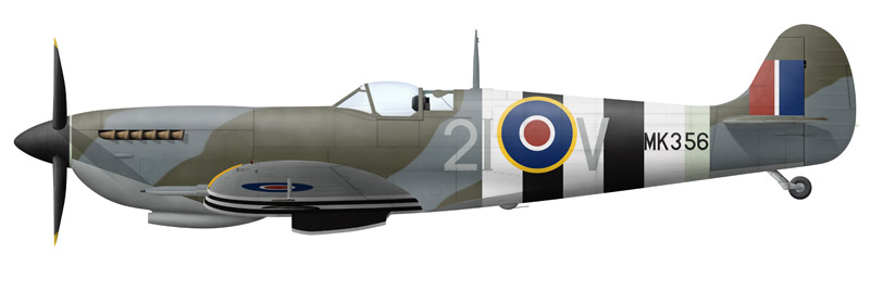 Spitfire MK356 as it appeared on D-Day